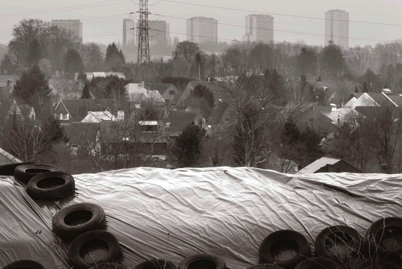 Gelaagde Rand © Michiel Hendryckx