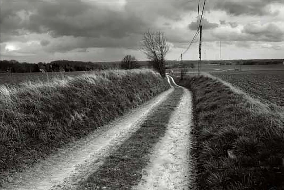 Overijse, Rotweg © Michiel Hendryckx
