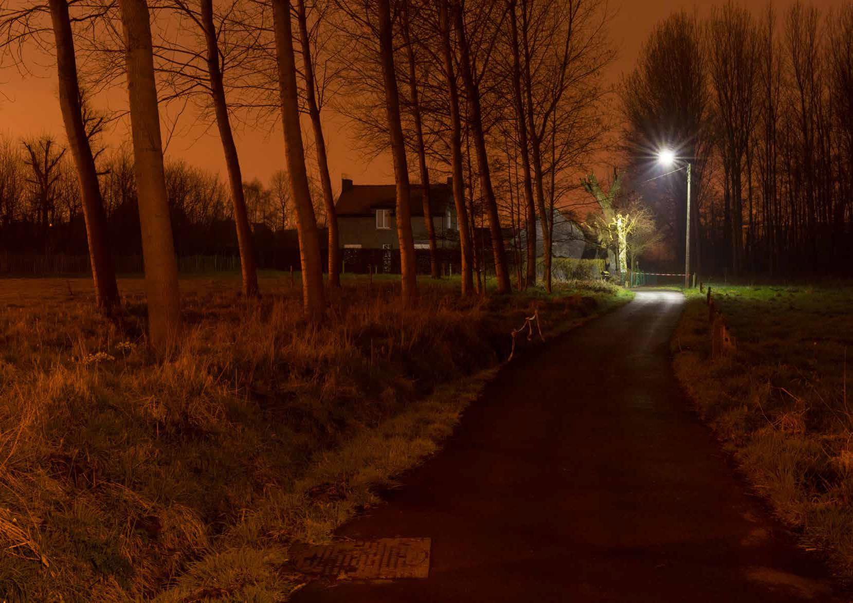Lichtpollutie in Asse © David Legrève
